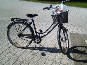 Uljas ratsuni. I love my bicycle <3