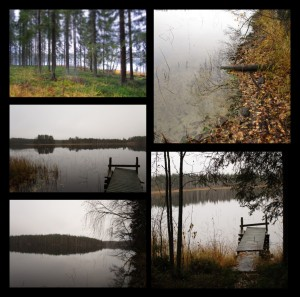 PhototasticCollage-2015-10-26-18-53-36